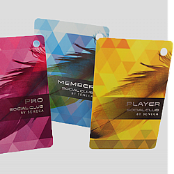Casino Player Cards